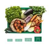 Gemüsekisten