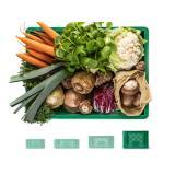 Regionalkiste Gemüse groß