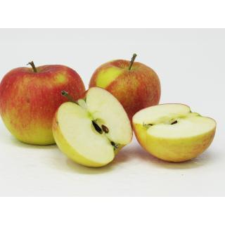 Äpfel - Nikolaus (Topaz)