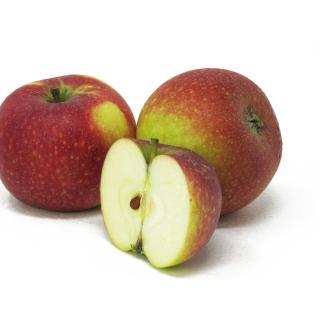 """Äpfel - """"Ingrid Marie"""" 5kg - Gebinde"""