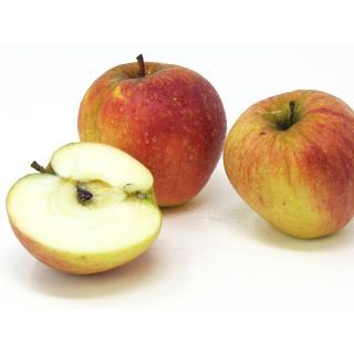 "Äpfel - ""Finkenwerder Herbstprinz"""