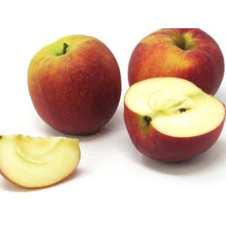 """Äpfel - """"Lavanthaler Bananenapfel"""""""