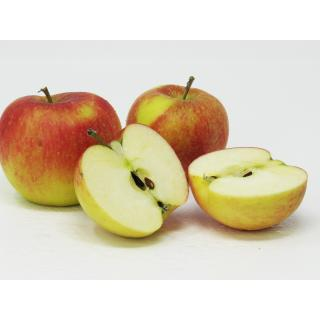 "Äpfel - ""Topaz"" 5 kg Gebinde"