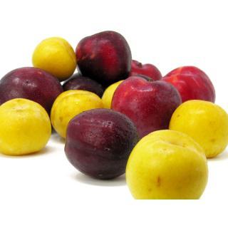 Pflaumen-Mix (rot/gelb/schwarz) 3 kg Gebinde