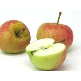 """Äpfel - """"Rubinola"""" - 2,5kg Kiste"""