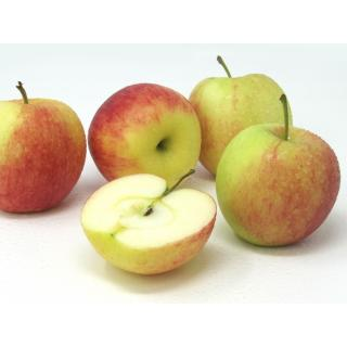 "Äpfel - ""Sissired"""