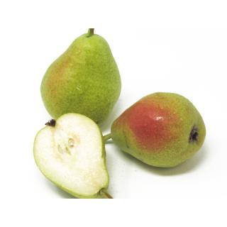 """Birne - """"Guyot"""" 5kg-Gebinde"""
