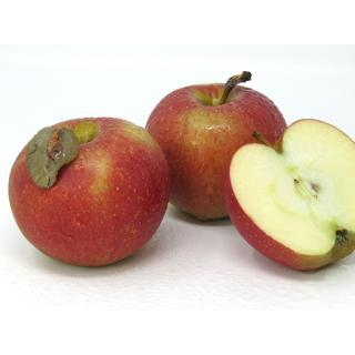"""Äpfel - """"Wellant"""" - 2,5kg-Kiste"""