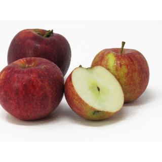 "Äpfel - ""Royal Rouge"" 2,5kg Kiste"