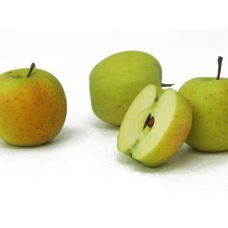 "Äpfel - ""Gold Rush"""
