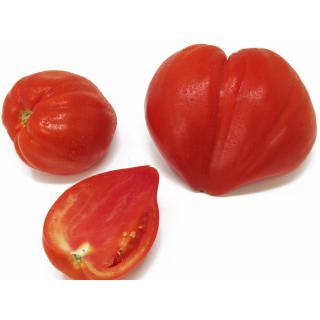 Tomaten - (Ochsenherz) Coeur-de-Boeuf