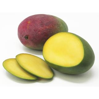 Mango *Kent*