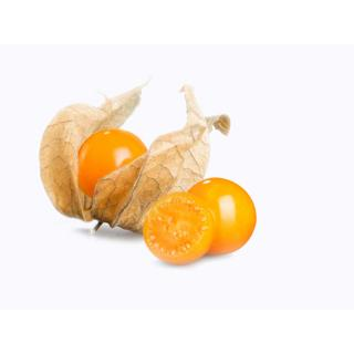 Physalis (Kapstachelbeeren)