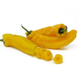 Paprika gelb spitz