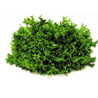 Salat, ''Crispy'' grün