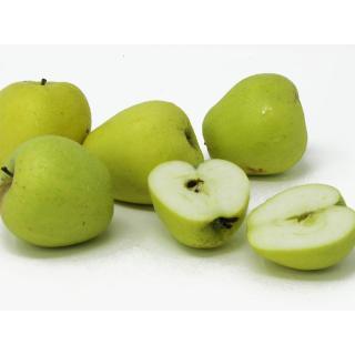 """Äpfel - """"Glockenapfel"""""""