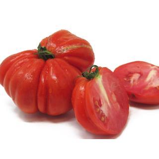 Tomaten - Ochsenherz