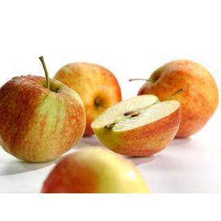 """Äpfel - """"Jonagored""""  -  2,5kg Kiste"""