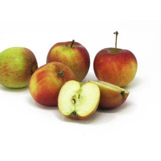 Äpfel - kleines Kaliber Braeburn