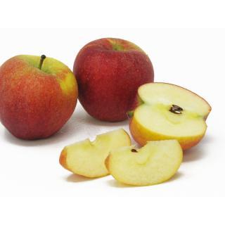 """Äpfel - """"Pilot"""" - 2,5kg Kiste"""