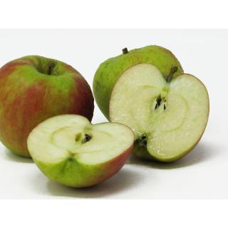 """Äpfel - """"Holsteiner Cox"""" - 2,5kg-Kiste"""