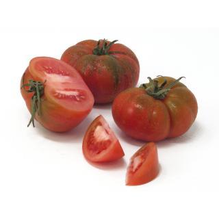 Tomaten - Rebelion