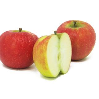 """Äpfel - """"Elstar"""""""