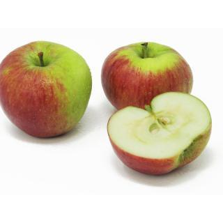 """Äpfel - """"Hana"""" (Frühapfel)"""