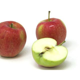 "Äpfel - ""Collina"" (Frühapfel) - 2,5kg Kiste"
