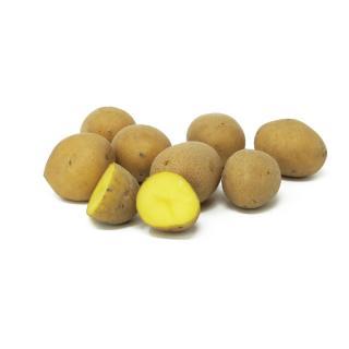Kartoffeln - kleine Sortierung, lose