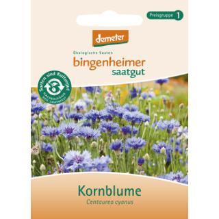 Kornblume - blau, Saatgut