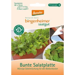 Salat Bunte-Mischung, Saatplatte