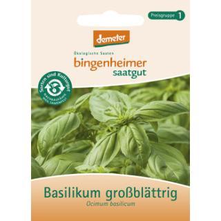 Basilikum, großblättrig, Saatgut