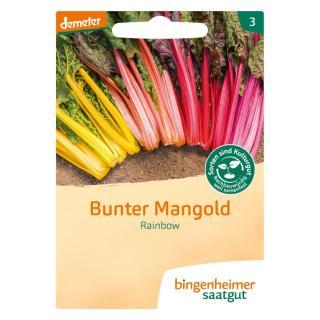 Mangold Rainbow, bunter, Saatgut