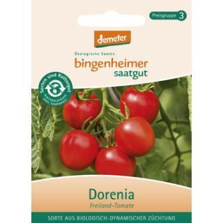 Tomate Freiland Dorenia, Saatgut