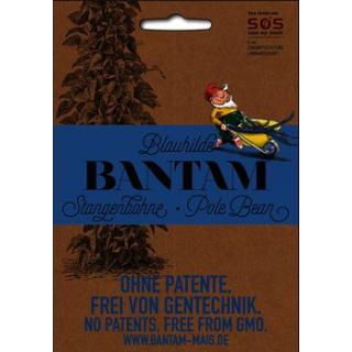 Stangenbohne Blauhilde Bantam Saatgut