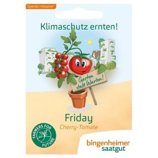 Fridays for Future Klimatomate Philamina