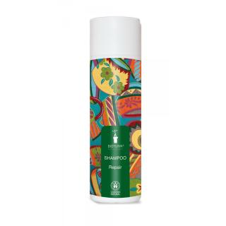 Shampoo Repair - 200 ml