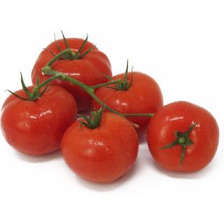 Tomaten - Strauchtomaten, NL