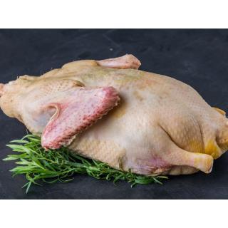 Ente groß (männlich), ca. 2,6 - 3,3kg, (Mühl) KW52, Mo 23.12.2019
