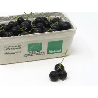 Johannisbeeren schwarz- 250g
