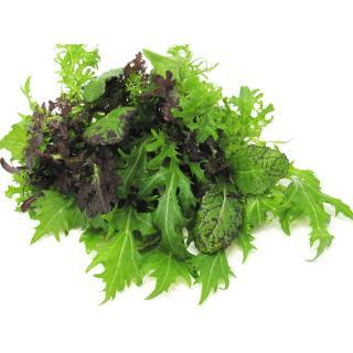 Asia -Salat rot/grün