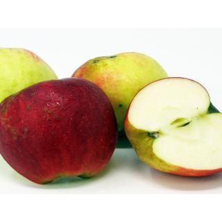 Äpfel - 2. Wahl  (kl.Schalenfehler)