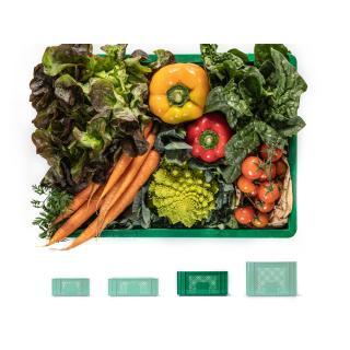 Gemüsekiste mittelgroß