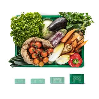 Gemüsekiste riesengroß