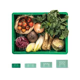 Regionalkiste Gemüse klein