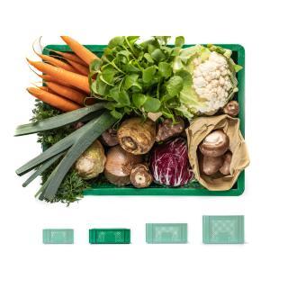 Regionalkiste Gemüse mittelgroß