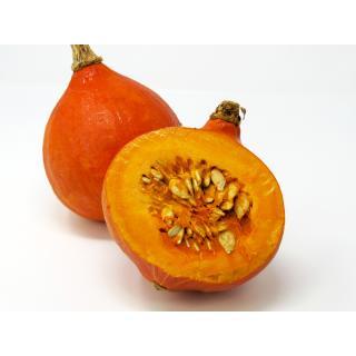 Kürbis - Hokkaido orange