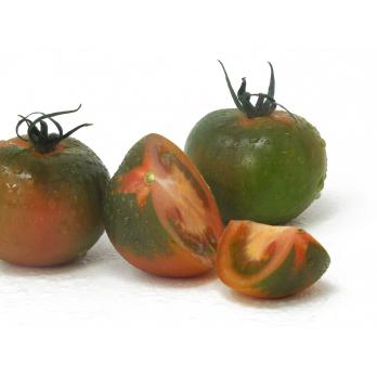 Tomaten - Camoro