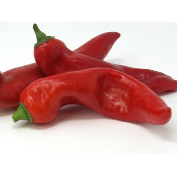 Paprika spitz - rot